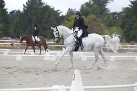 SI_Festival_of_Dressage_300115_Level_6_NCF_0190