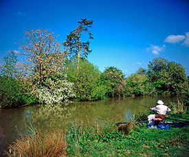 angler on kennet & avon canal, caen hill, devizes, wiltshire