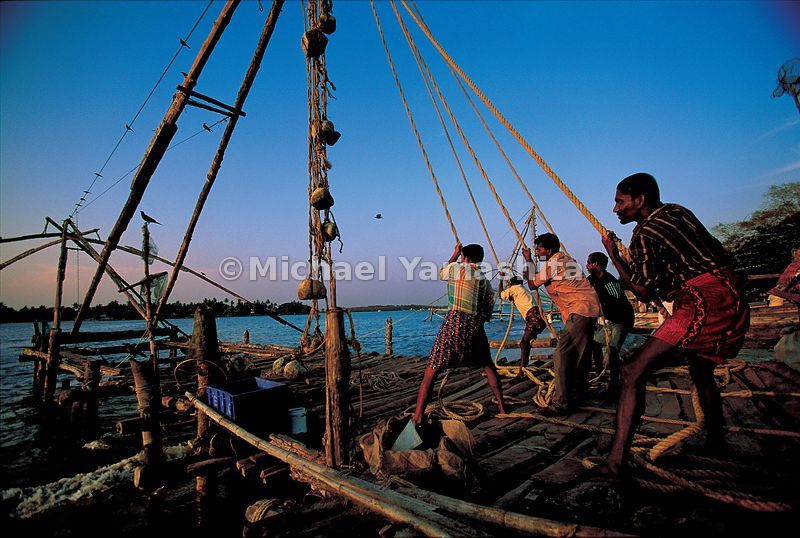 These Cochin fishermen need counterweights and manpower to lift the dip nets out of the water.