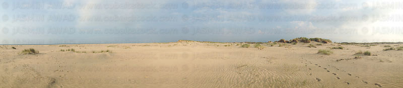 Large panorama of dunes with footsteps