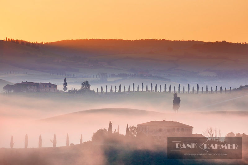 Tuscany landscape in fog - Europe, Italy, Tuscany, Siena, Val d'Orcia, San Quirico d'Orcia, south of - digital