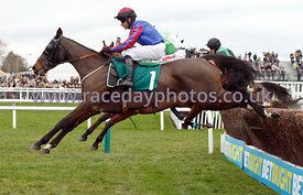 12:50 - The Join The BetBright.com Racing Club Handicap Steeple Chase photos