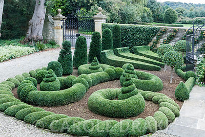 Clipped box and yew in the Parterre Garden punctuated by standard laurels with wall trained pyracantha behind. Gazebo and gates by Richard Overs. Bourton House, Bourton-on-the-Hill, Moreton-in-Marsh, Glos, UK