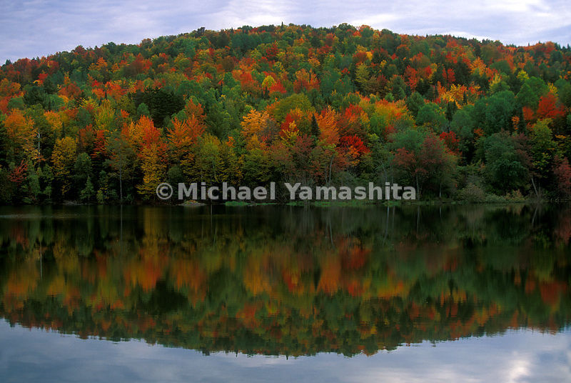 Fall foliage along Hardwick Lake, Vermont.