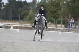 SI_Festival_of_Dressage_310115_Level_6_7_MFS_0845