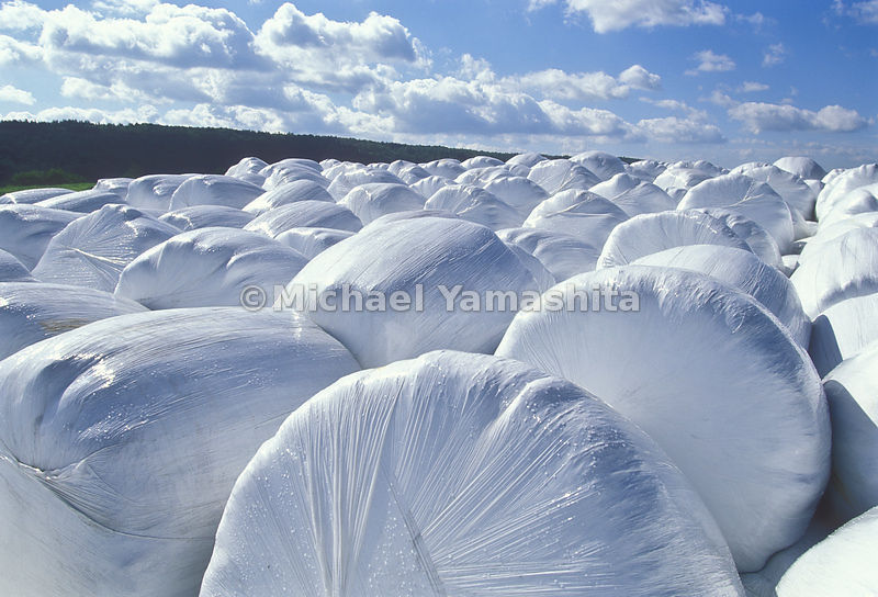 Bales of Hay Wrapped in Plastic