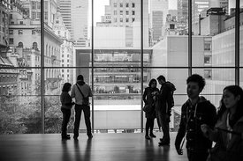 MoMa, New York, Novembre 2014