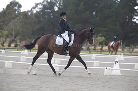 SI_Festival_of_Dressage_300115_Level_4_JLT_0130