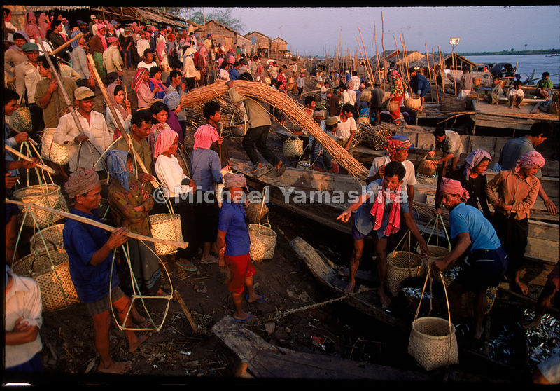 Each January, families from up to 100 miles away travel to the banks of the Tonle Sap, north of Phnom Penh, during the prahak fishing season. They buy their annual supply of the tiny fish, to be salted and prepared as a sauce, one of the staples of the Cambodian diet.