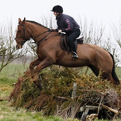 15th February 2015 Jumping practice at South Farm photos