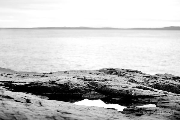 OTTER CLIFF COAST ACADIA NATIONAL PARK BLACK AND WHITE