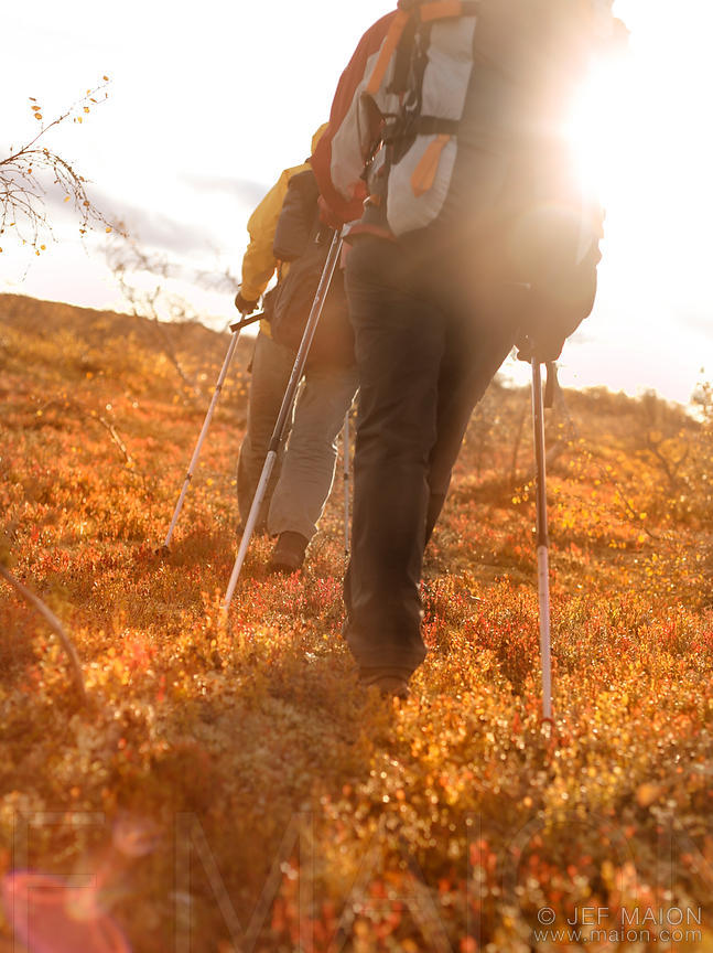 Hiking on autumn tundra