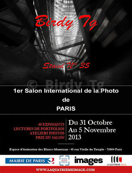 INVITATION_SALON_PHOTO___Birdy_Tg