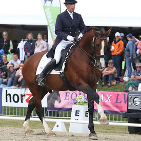 242 CDI3* FEI Grand Prix Musical photos