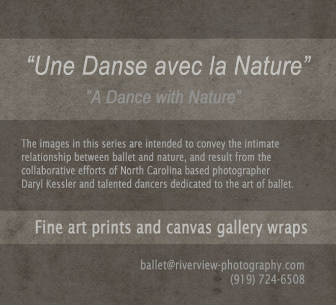 ballet_with_nature_panel__550x500