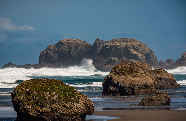 Oregon_Coast-32