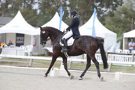 SI_Festival_of_Dressage_310115_Level_6_7_MFS_0629
