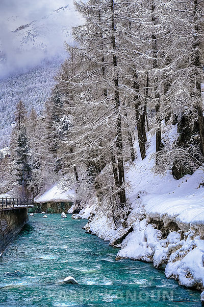 Gornera river and snowy forest - Zermatt