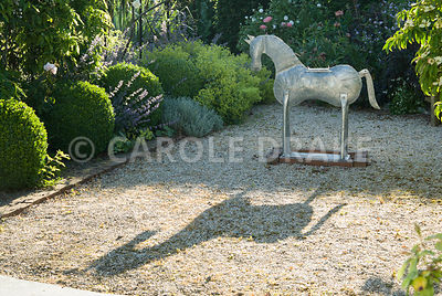 Galvanised metal horse stands on a gravel area beside pergola framed with box spheres and covered with roses and clematis, all softened with frothy Alchemilla mollis and Nepeta 'Six Hills Giant'. Caervallack Farm, St Martin, Helston, Cornwall, UK