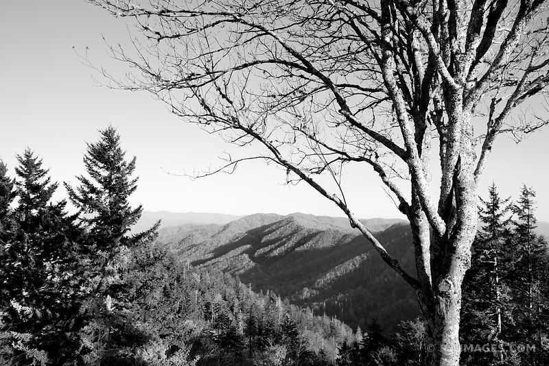 NEWFOUND GAP SMOKY MOUNTAINS BLACK AND WHITE