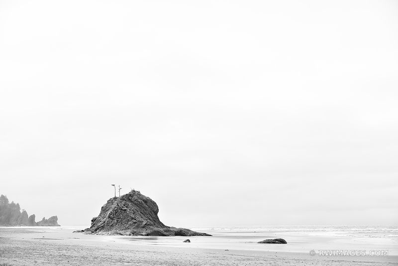 SEASTACKS SECOND BEACH LA PUSH AREA OLYMPIC NATIONAL PARK WASHINGTON BLACK AND WHITE