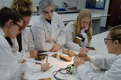 Forensic Anthropology: Students and lecturers photos