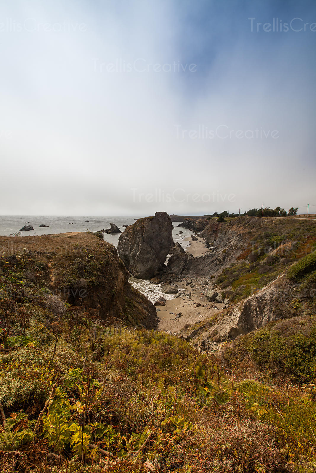 A Northern California coastal sandy beach off of Highway 1.