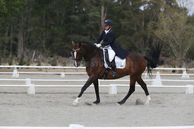 SI_Festival_of_Dressage_300115_Level_9_SICF_0478