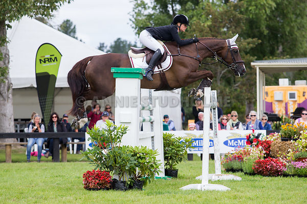 NZ National Showjumping Champs 2016 photos