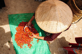 Chilli Seller with Hat