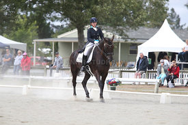 SI_Festival_of_Dressage_310115_Level_6_7_MFS_0633