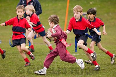 School Rugby photos