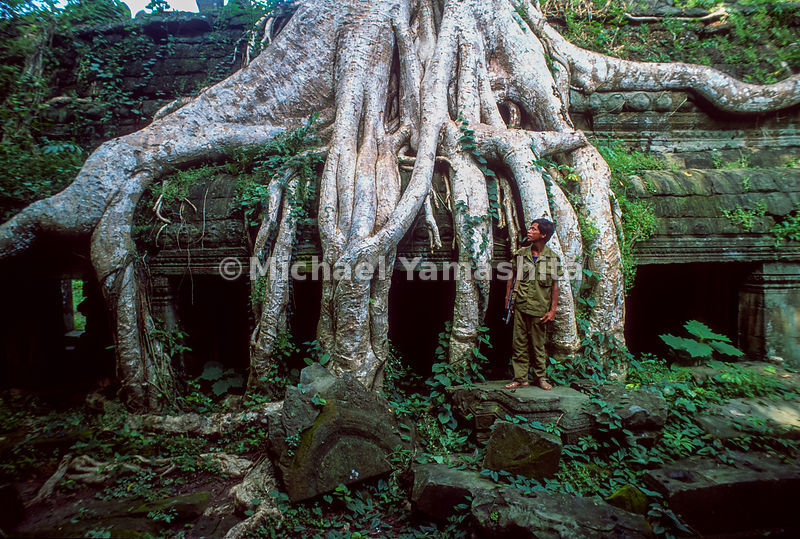 Ta Phrom Temple, built in the 12th century, overgrown..Siem Reap, Cambodia