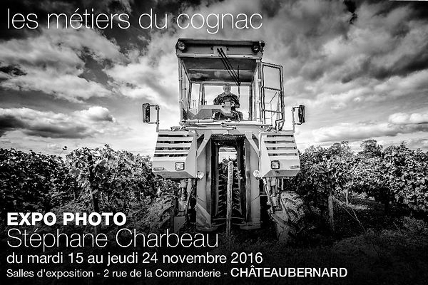 Expo photo 2016 : les métiers du Cognac photos