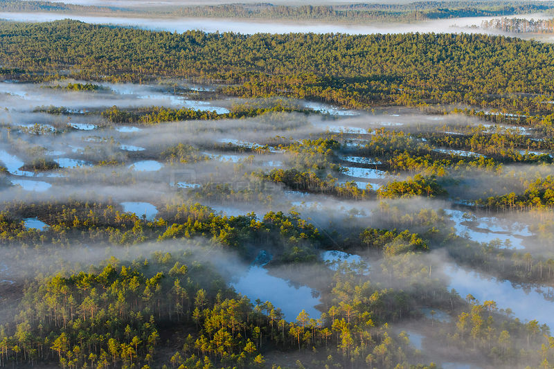 Aerial view of fog  over bogs, Tartumaa, Estonia, May 2013.