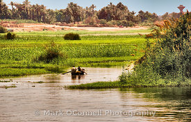 Rowing boat on the Nile river