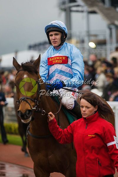 Cheltenham_Gold_Cup_Day_2015_-177