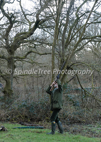 Faccombe Shoot, Beaters Day 31-1-18 photos