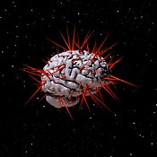 Human Brain with Spikes and Stars