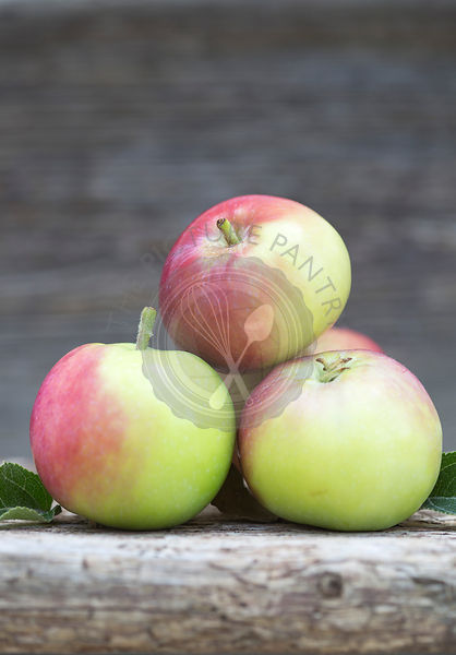 group of red and green apples, with leaves,  on rustic wood shot outdoors