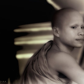 """Young Monk at Angkor Wat Monks School - 1"""