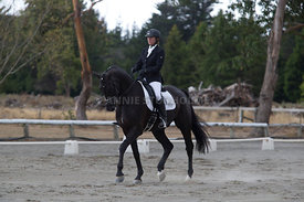 SI_Festival_of_Dressage_300115_Level_3_NCF_0090