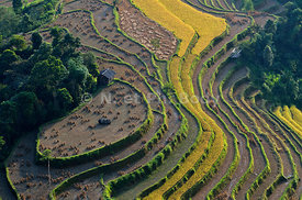 Ha Giang photos