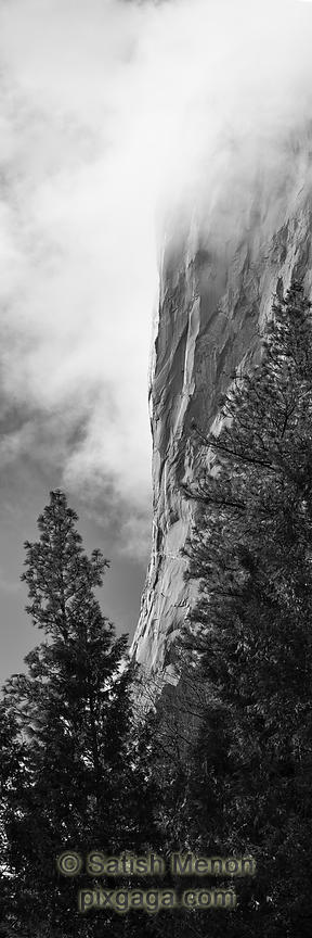 Vertical face of El Capitan, Yosemite National Park, CA, USA