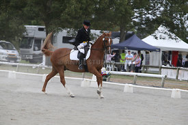 SI_Festival_of_Dressage_310115_Level_6_7_MFS_0804