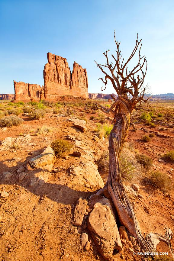 THE ORGAN COURTHOUSE TOWERS ARCHES NATIONAL PARK UTAH COLOR VERTICAL