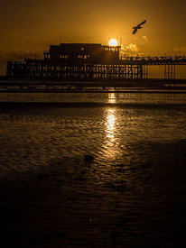 WorthingPier_Jan2016_118
