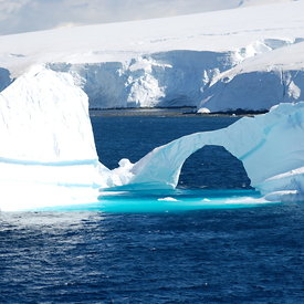 Antarctica & Chilé: Ice and Penguins (Magellanics, Gentoos, Chinstraps, Adeles) photos