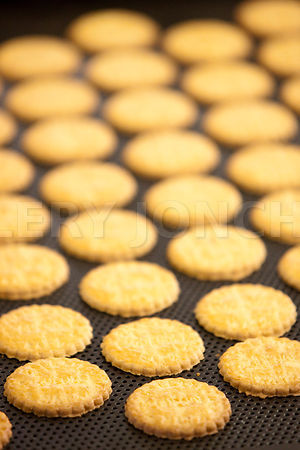 biscuits saint guenole