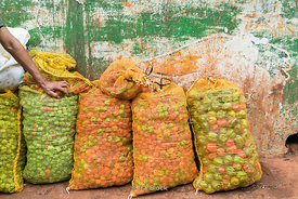 Bags of vegetables for sale at a local market in Havana, Cuba.